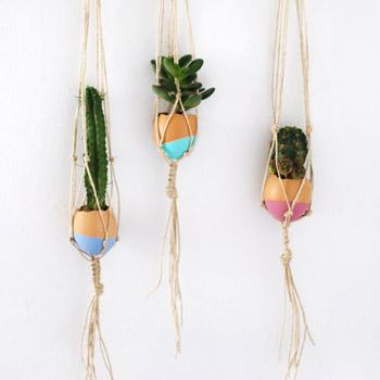 Mini Hanging Garden
